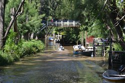 Sendero de Caminatas Arroyo Rama Negra
