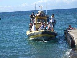 Adventure X Boat Tours