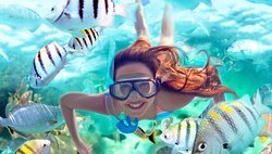Vive Cancun Tours & Travel
