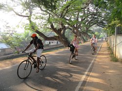 Enviro Bicycle Tours