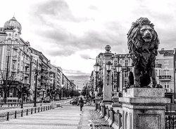 Lions' Bridge