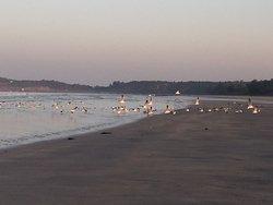 Malgund Beach