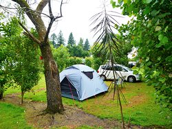 Lovely Mature Green Campsite
