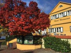 Hotel zum lieben Augustin am See