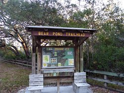 Bear Pond Trailhead