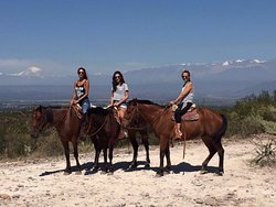 Los Pingos Horse Riding