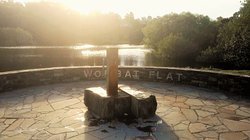 Wombat Flat Mineral Spring