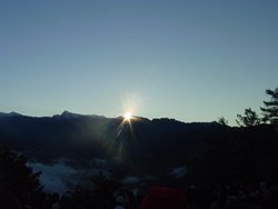 Alishan Long Ding Trail