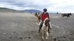 riding tour in Iceland