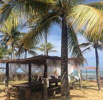 Tartarugas Beach