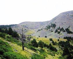 Ruta de Senderismo Cami de Manyat