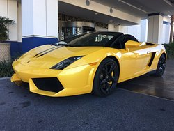 We rent excitement!! Lamborghini Gallardo!