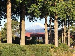 Gold Kawana Country Club