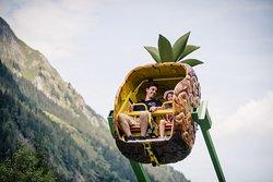 Wild & Adventure Park Ferleiten