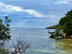 Playa Manglillo