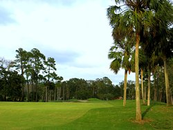 The Oak Bridge Club at Sawgrass