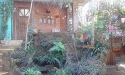 Jardin de los Picaflores