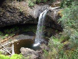 Tarraleah Falls