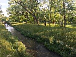 Hakanoki Nature Park