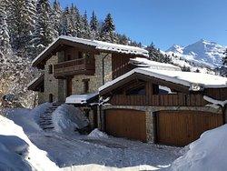 TG Ski Chalets Meribel