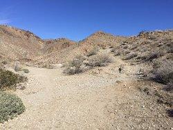Frank Bogert Trail