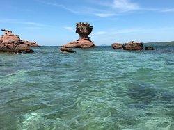 Archipelago Anthoy