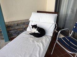 Bestes Hotel in Volos