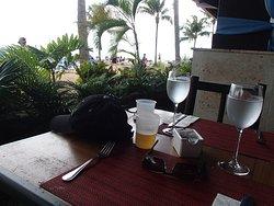 Le restaurant grill, vue sur la plage