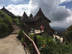 Mount Kilimanjaro View Lodge