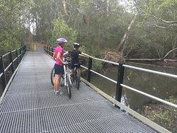 Coffs Creek Walk and Cycleway