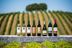 Vinhos Quetzal - Quetzal Wines