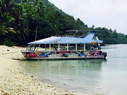 Turtle Reef Cruises