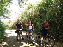 Mountour Bike