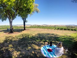 Yarrawood Winery
