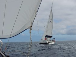 Salana Sailing