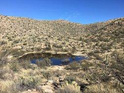 Agua Caliente Hill Trail