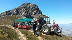 Protea Farm Tractor Trips