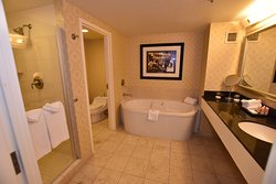 Large bathroom with separate shower stall and toilet room.