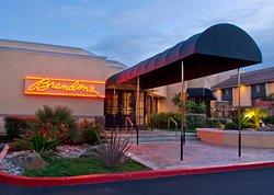 Brandon's Restaurant & Bar