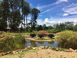 Jardim Botânico de Brasília
