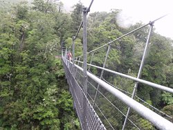 Waiohine Gorge Suspension Bridge
