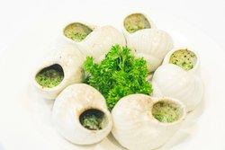 The Petit Snail