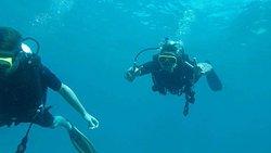 Immersioni e snorkeling
