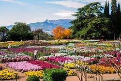 Nikita Botanical Gardens
