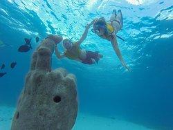 Total Snorkel