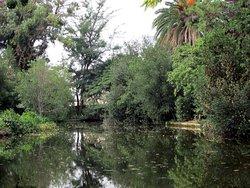 Parque de Can Solei i Ca l'Arnus