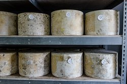 The Cheddar Gorge Cheese Company Ltd