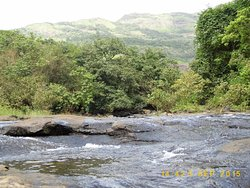 Pure waters of the Amba River flow year long