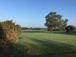 New Forest Golf Club