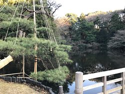 Meiji Shrine Imperial Garden